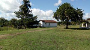 Estação Zootécnica de Itajú do Colônia – EZICO