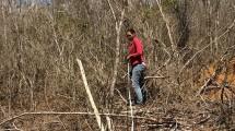 Mestranda Ariane Oliveira realizando marcação de parcela da árvore.