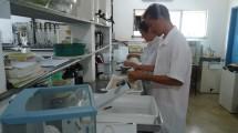 Laboratório de Forragilcultura e Pastagem.
